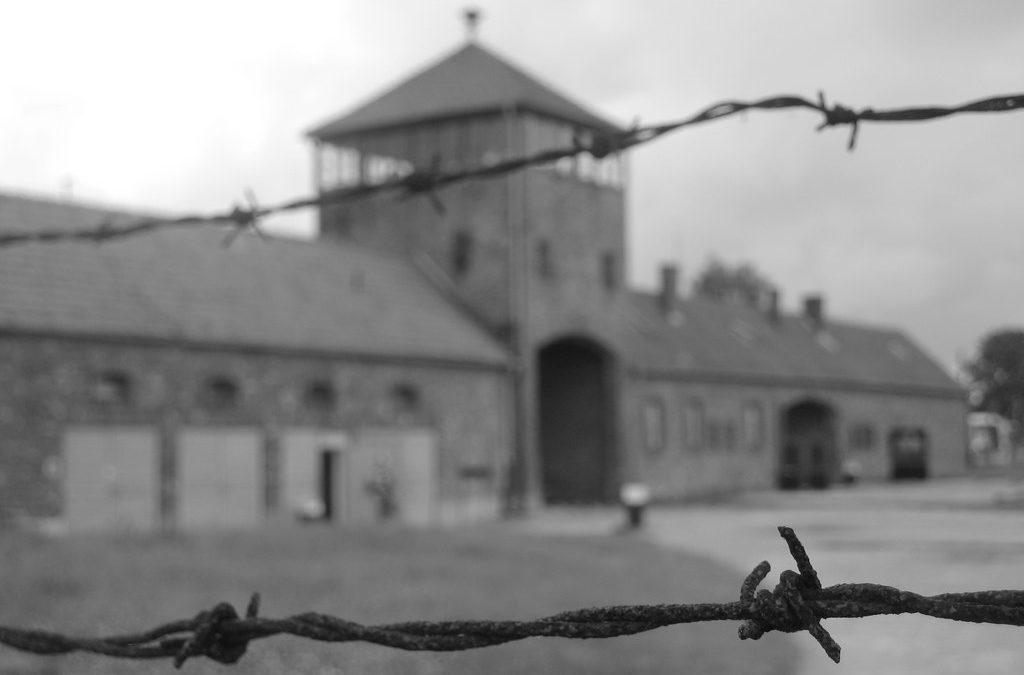 Ricostruito all'Istituto Massimo il campo di Auschwitz-Birkenau con la realtà virtuale.